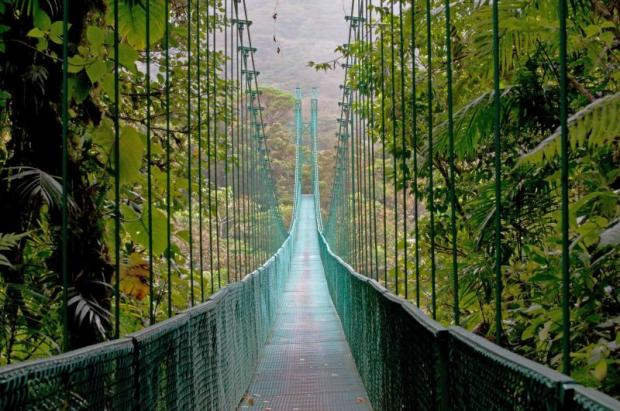 costa_rica_monteverde_cloud_forest_hanging_bridge_0